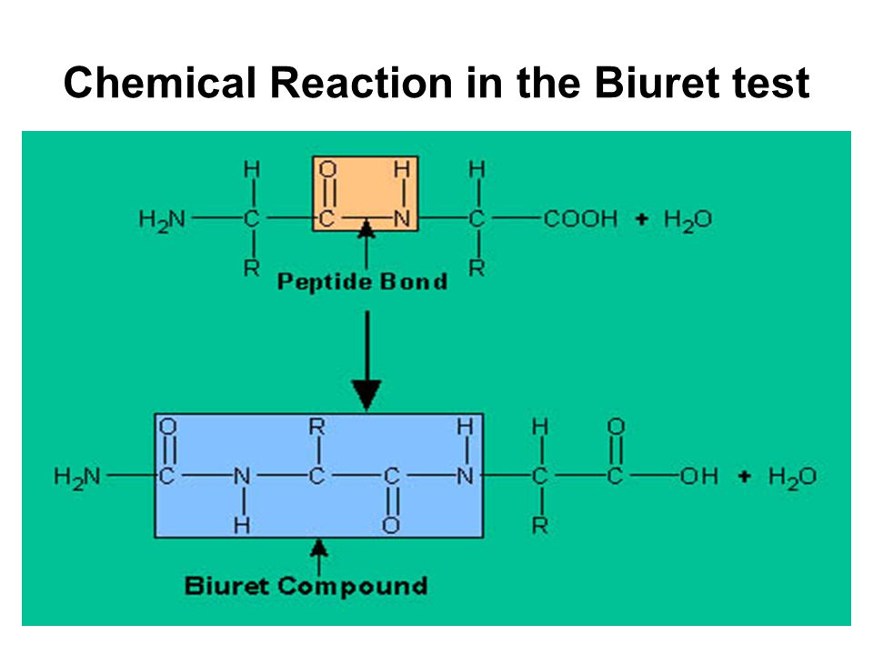 Chemical Reaction in the Biuret test