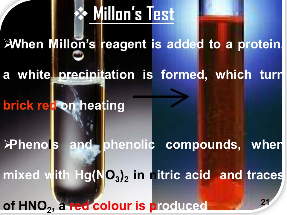 Millon's Test When Millon's reagent is added to a protein, a white precipitation is formed, which turn brick red on heating.