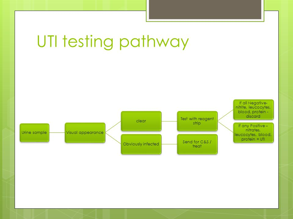 UTI testing pathway Urine sample Visual appearance clear