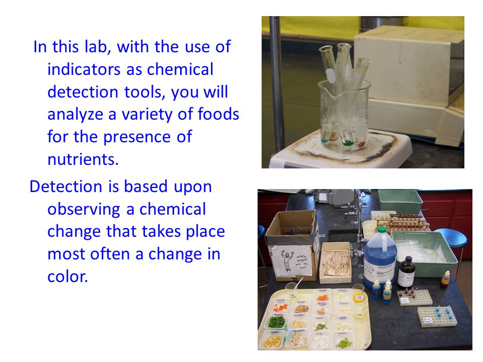 In this lab, with the use of indicators as chemical detection tools, you will analyze a variety of foods for the presence of nutrients.