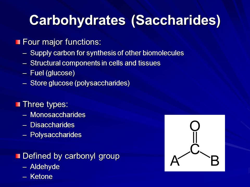 Carbohydrates (Saccharides)