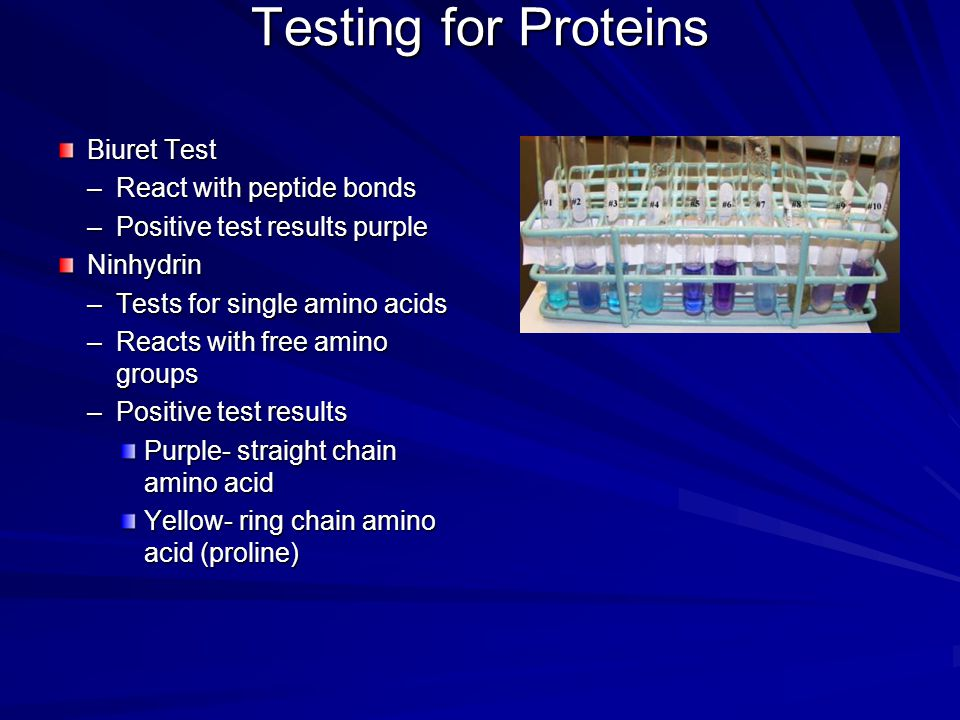 Testing for Proteins Biuret Test React with peptide bonds