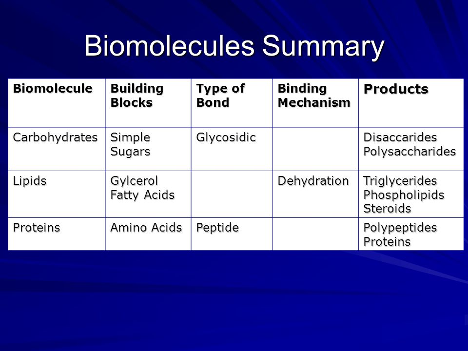 Biomolecules Summary Products Biomolecule Building Blocks Type of Bond