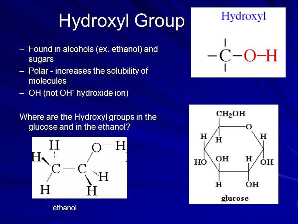 Hydroxyl Group Found in alcohols (ex. ethanol) and sugars