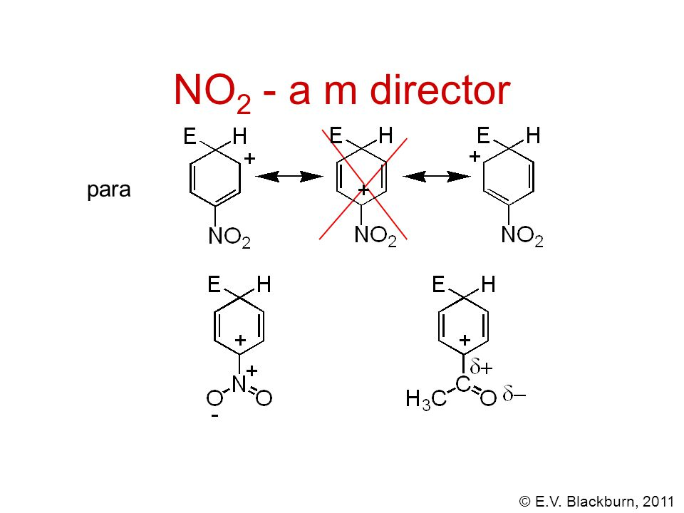 NO2 - a m director para
