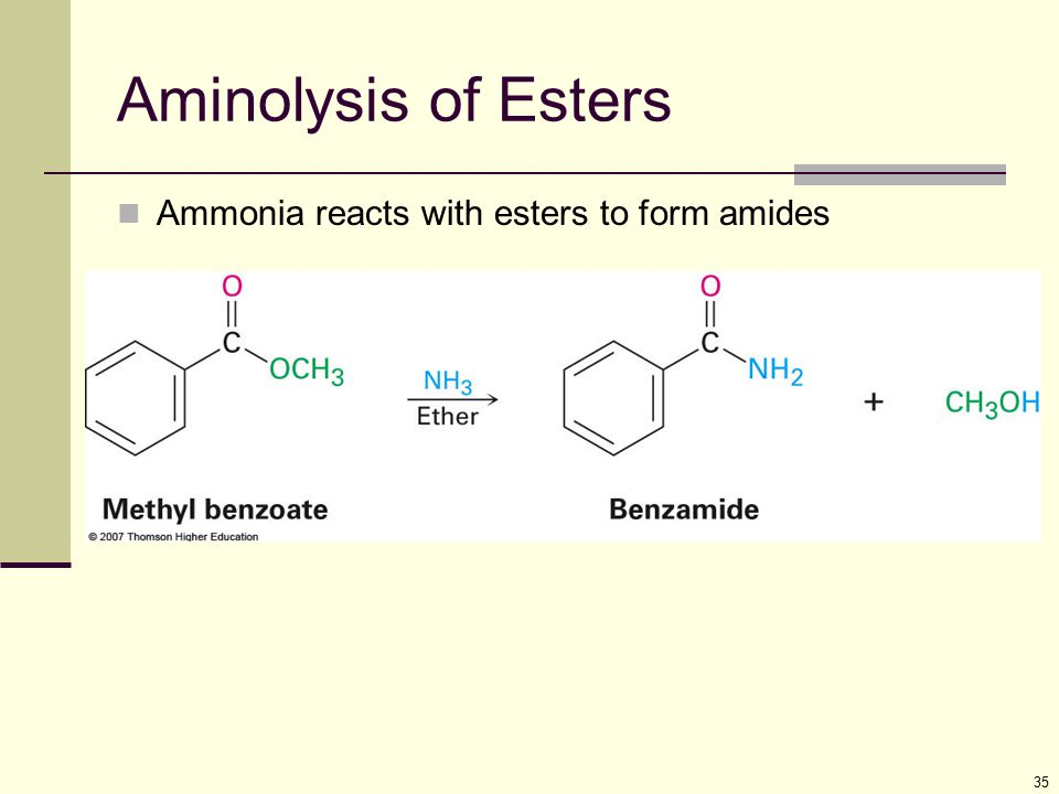 Aminolysis of Esters Ammonia reacts with esters to form amides