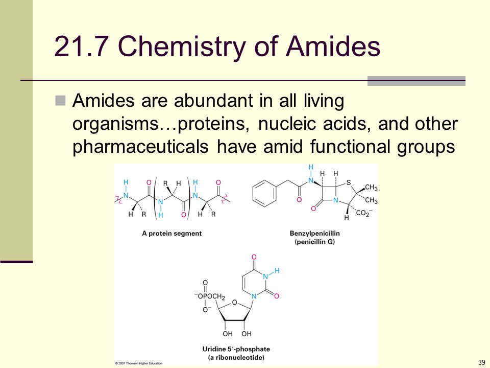 21.7 Chemistry of Amides Amides are abundant in all living organisms…proteins, nucleic acids, and other pharmaceuticals have amid functional groups.