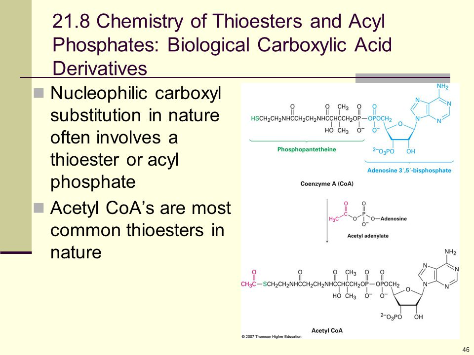 21.8 Chemistry of Thioesters and Acyl Phosphates: Biological Carboxylic Acid Derivatives