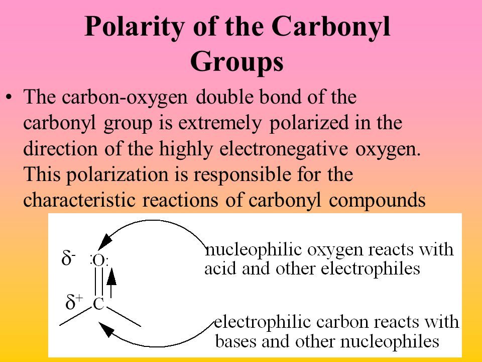 Polarity of the Carbonyl Groups