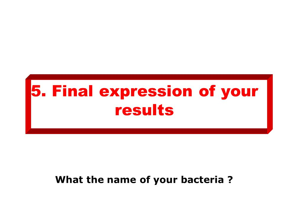 5. Final expression of your results