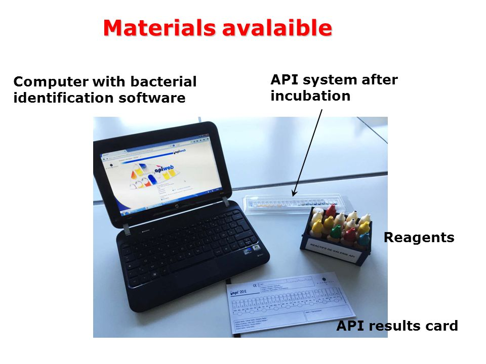 Materials avalaible API system after incubation