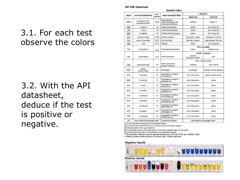 3.1. For each test observe the colors