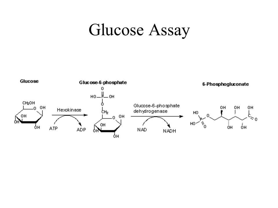 Glucose Assay