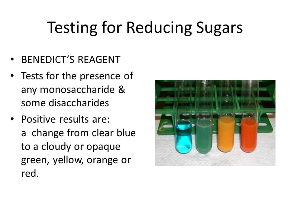 Testing for Reducing Sugars