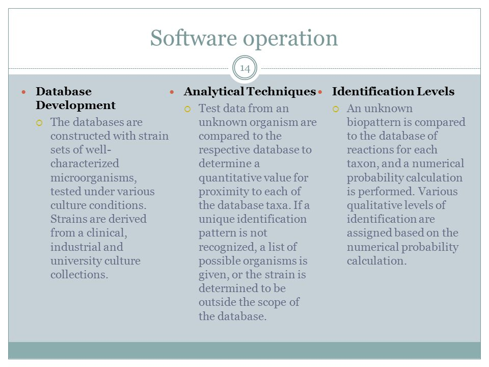Software operation Database Development Analytical Techniques