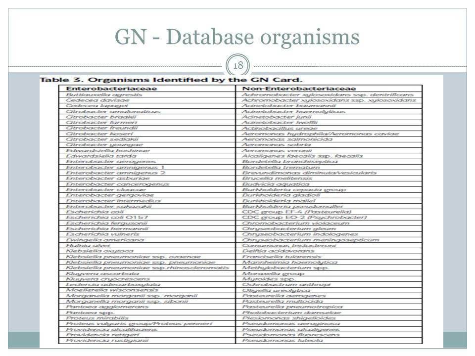 GN - Database organisms