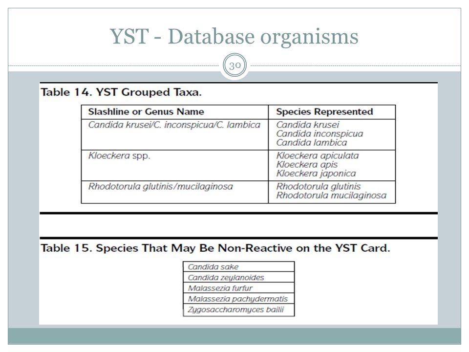 YST - Database organisms