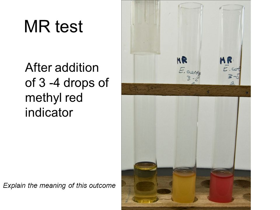 MR test After addition of 3 -4 drops of methyl red indicator