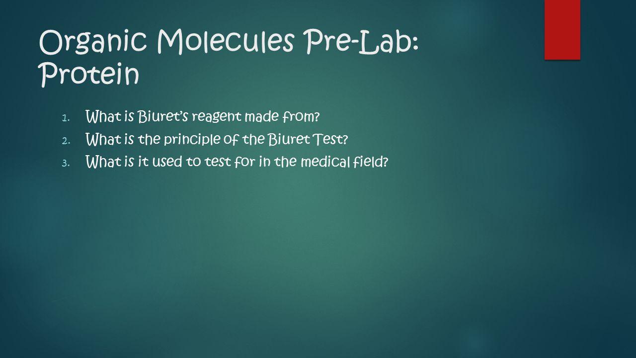Organic Molecules Pre-Lab: Protein