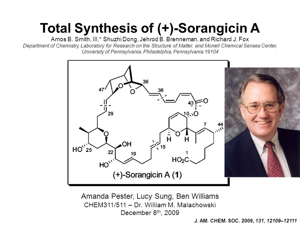 Total Synthesis of (+)-Sorangicin A