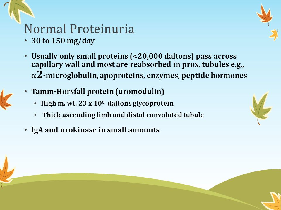 Normal Proteinuria 30 to 150 mg/day