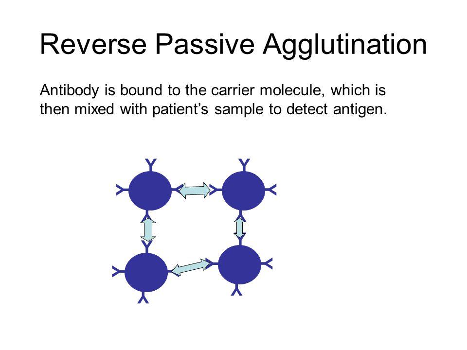 Reverse Passive Agglutination