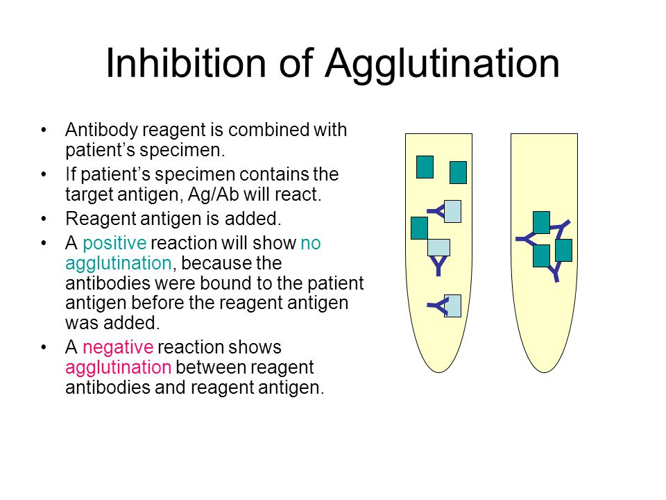 Inhibition of Agglutination