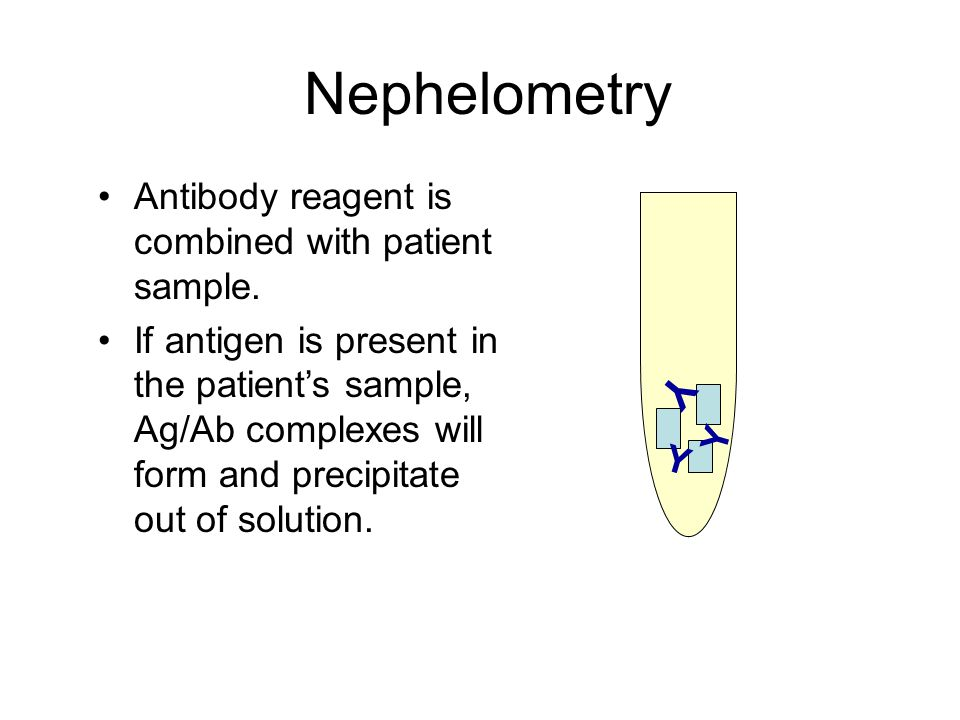 Nephelometry Y Antibody reagent is combined with patient sample.