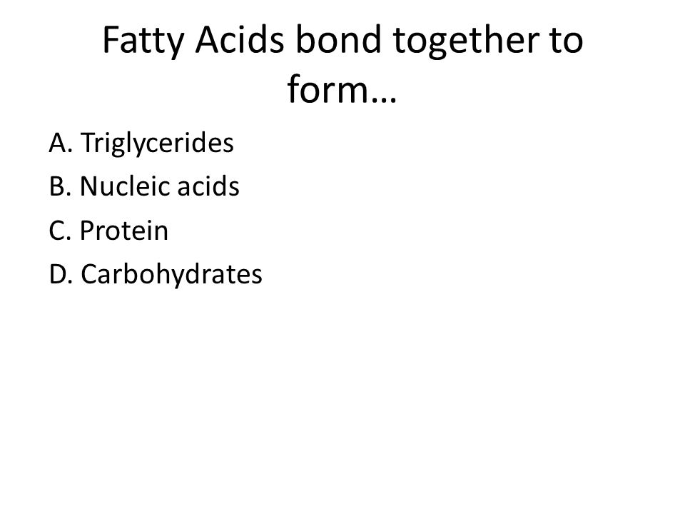 Fatty Acids bond together to form…