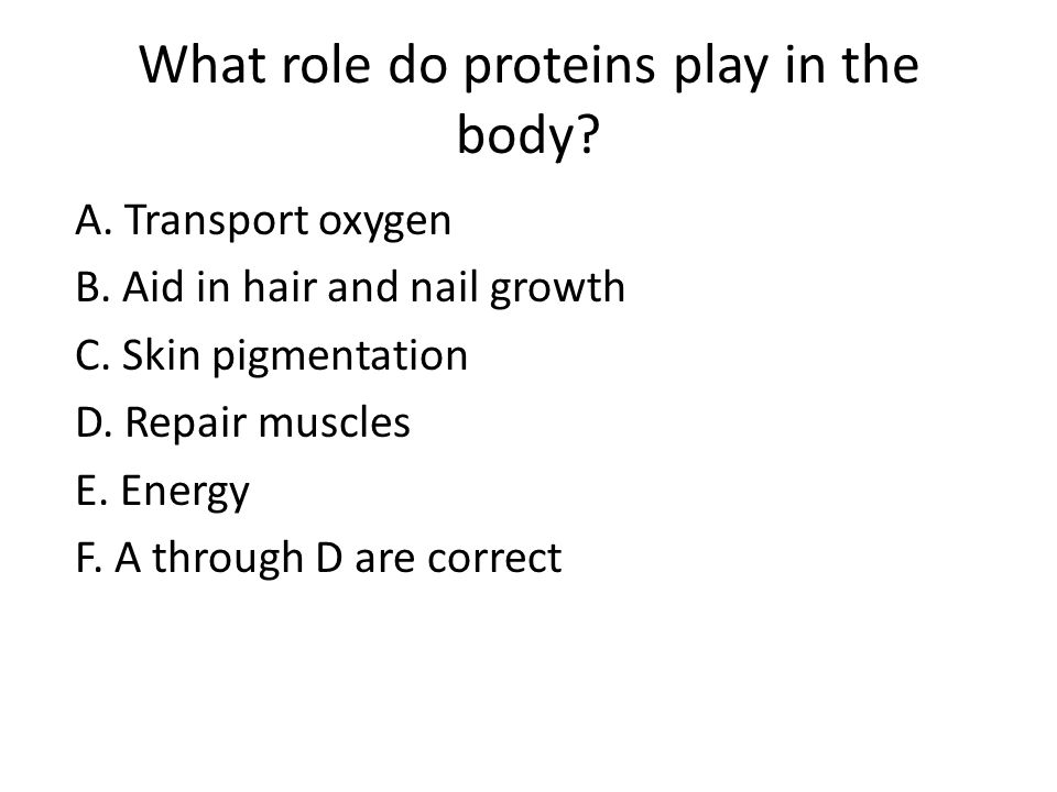 What role do proteins play in the body