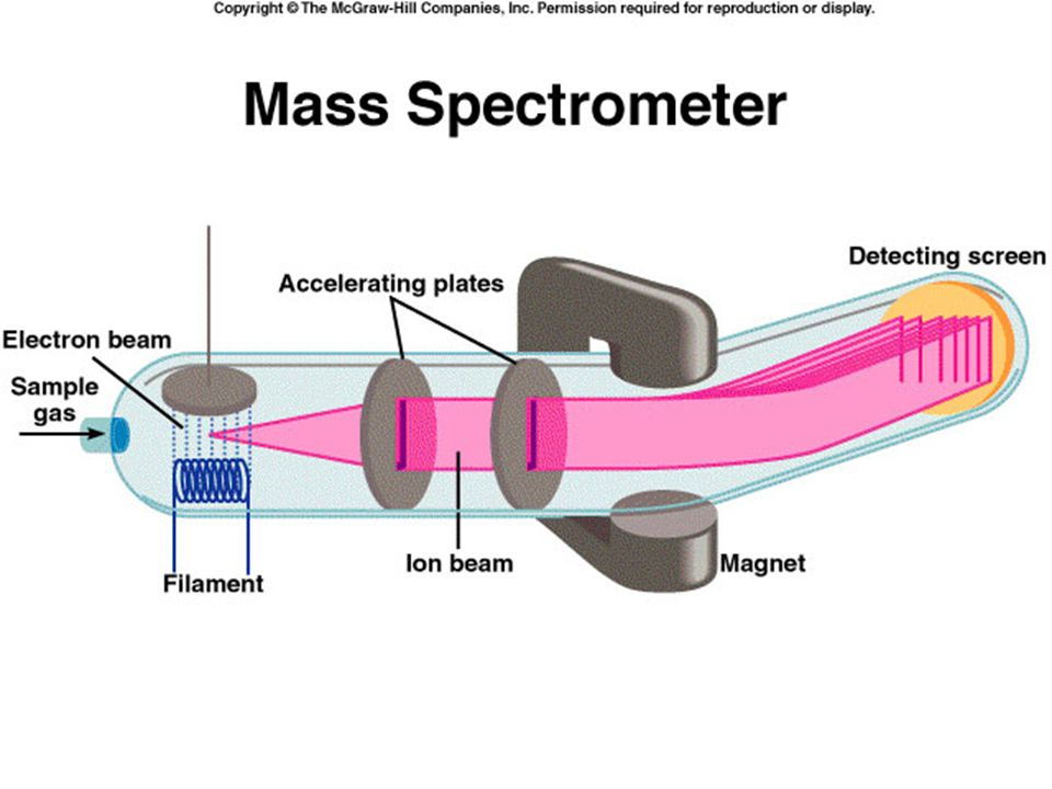 In a mass spectrometer, a gaseous sample is bombarded by a stream of high-energy electrons. Collisions between the electrons and the gaseous atoms (or molecules) produce positive ions by dislodging an electron from each atom or molecule. These positive ions (of mass m and charge e) are accelerated by two oppositely charged plates as they pass through the plates. The emerging ions are deflected into a circular path by a magnet. The radius of the path depends on the charge-to-mass ratio (that is, e/m). Ions of smaller e/m ratio trace a wider curve than those having a larger e/m ratio, so that ions with equal charges but different masses are separated from one another. We can figure out the parent atom or molecule from the magnitude of its deflection. When the ions arrive at the detector, a current for each type of ion is registered. The amount of current is proportional to the number of ions, so it enables us to determine the relative abundance of isotopes.