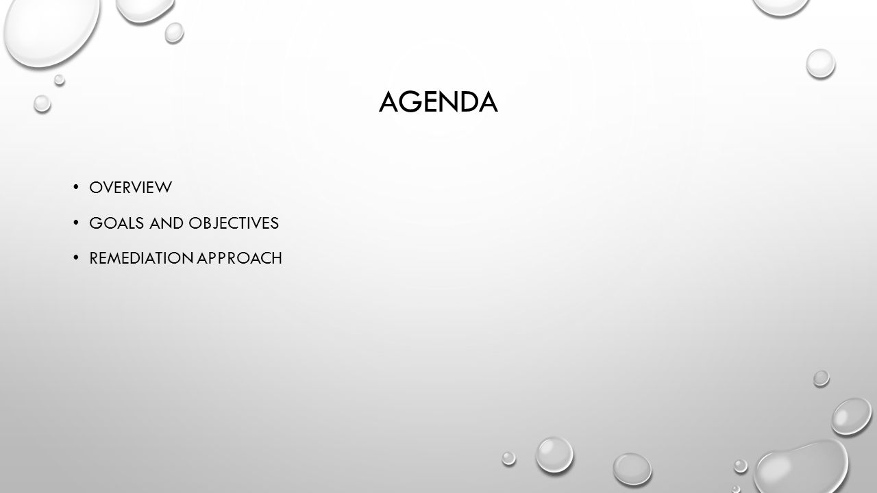 Agenda Overview Goals and Objectives Remediation Approach