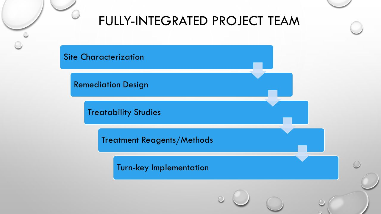 Fully-Integrated Project Team