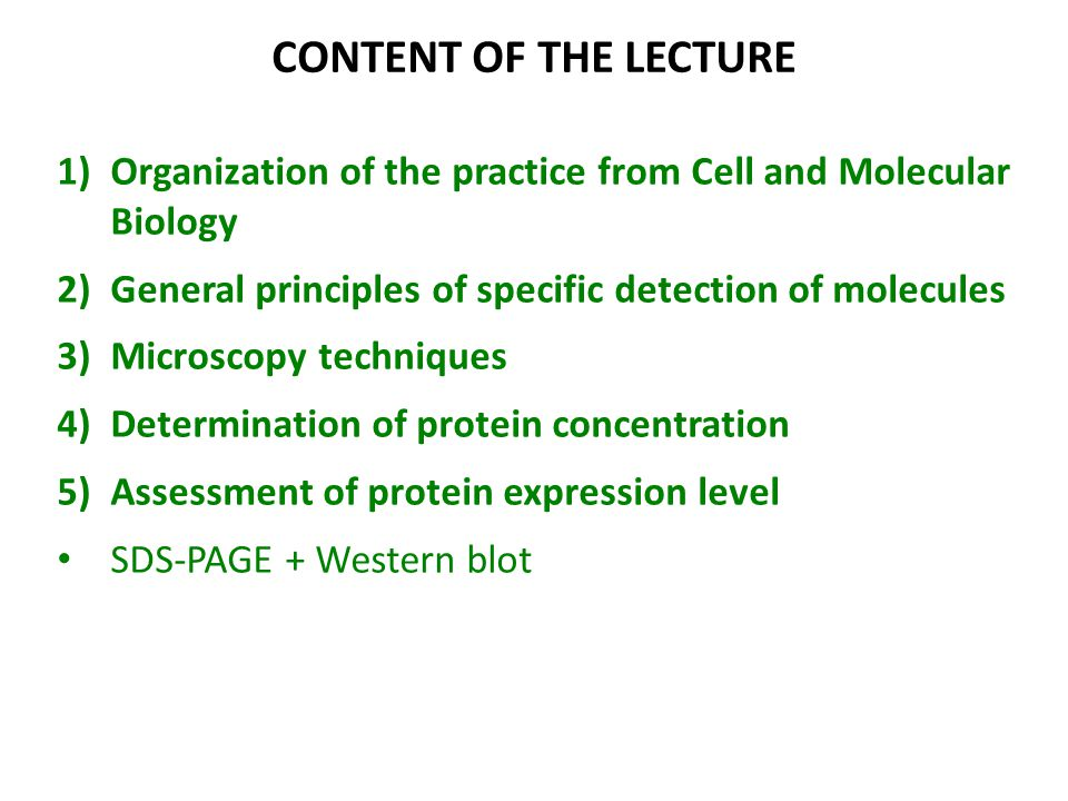 CONTENT OF THE LECTURE Organization of the practice from Cell and Molecular Biology. General principles of specific detection of molecules.