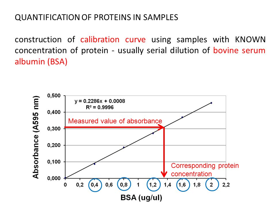 QUANTIFICATION OF PROTEINS IN SAMPLES