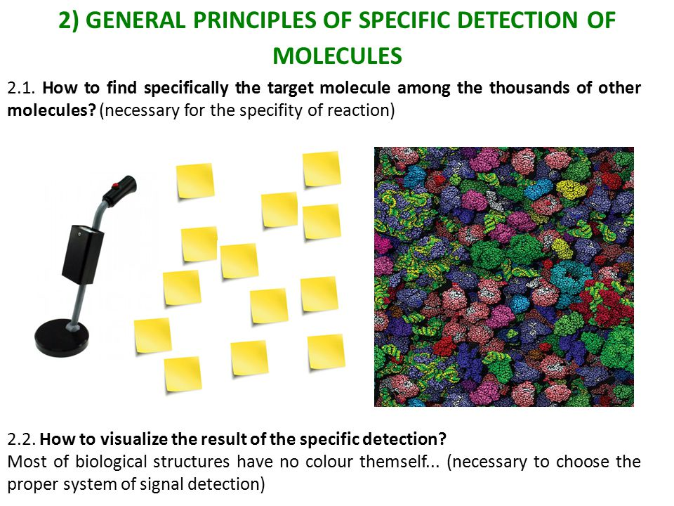 2) GENERAL PRINCIPLES OF SPECIFIC DETECTION OF MOLECULES