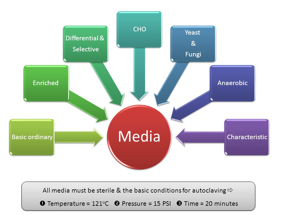 All media must be sterile & the basic conditions for autoclaving 