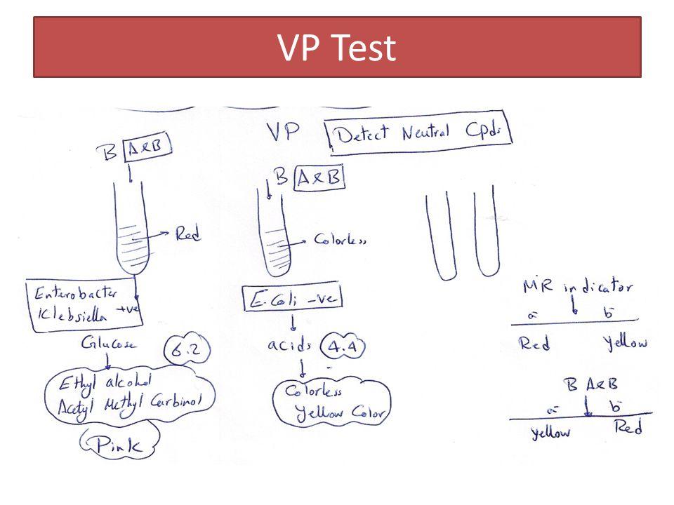 VP Test