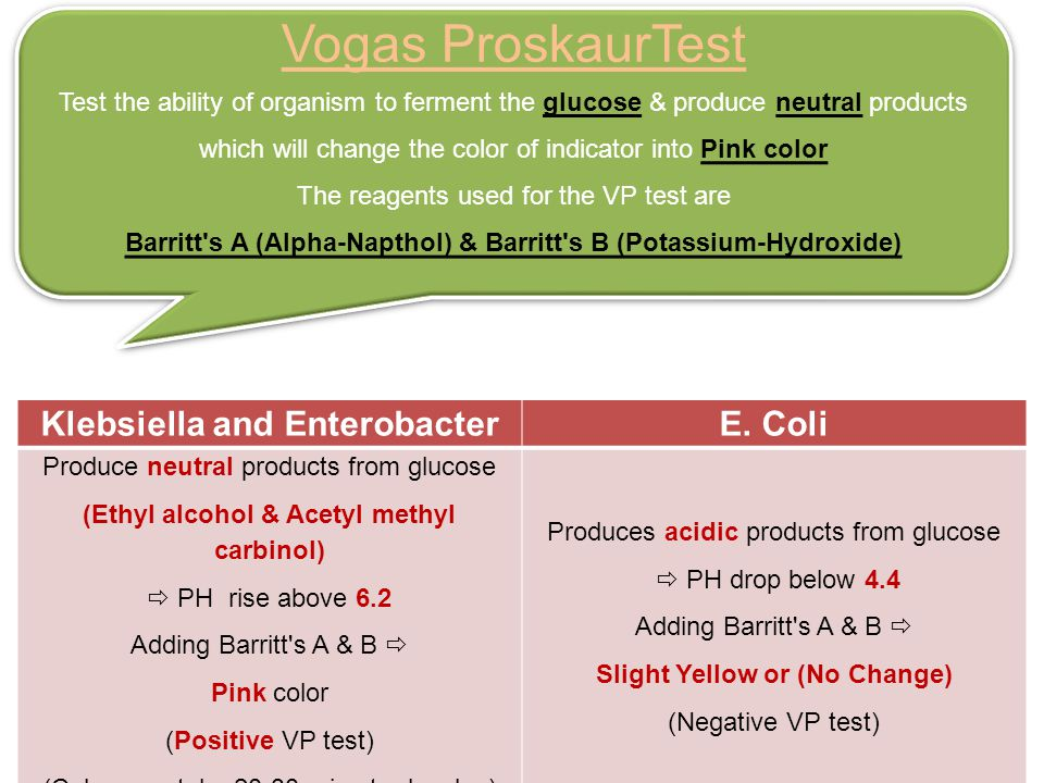 Vogas ProskaurTest E. Coli Klebsiella and Enterobacter