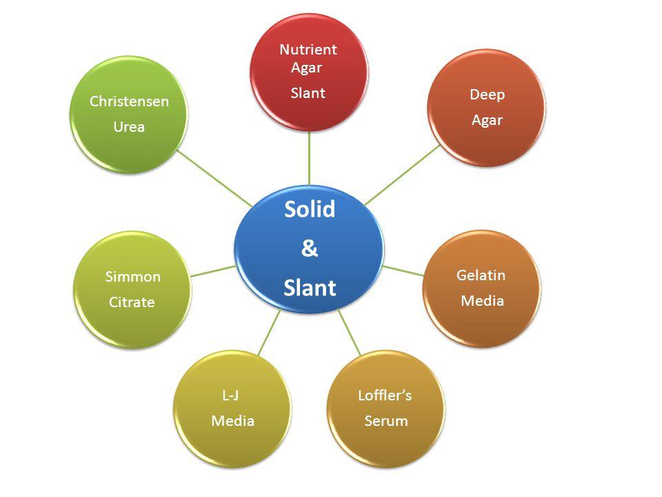 Solid & Slant Nutrient Agar Deep Agar Gelatin Media Loffler's Serum