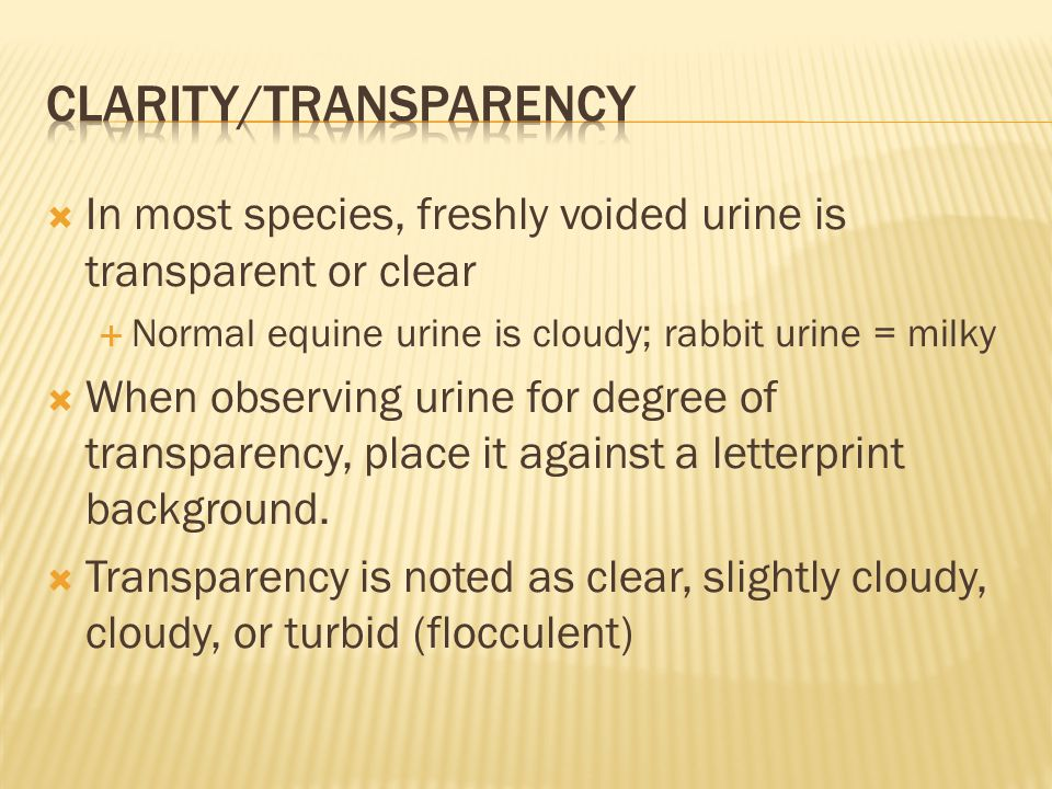 Clarity/transparency