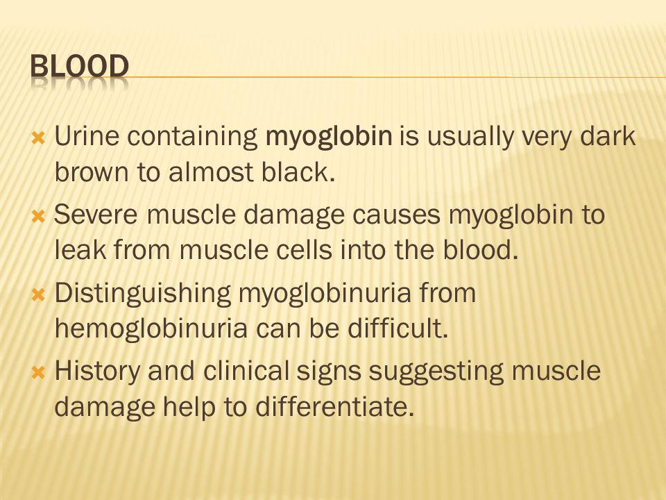 Blood Urine containing myoglobin is usually very dark brown to almost black.