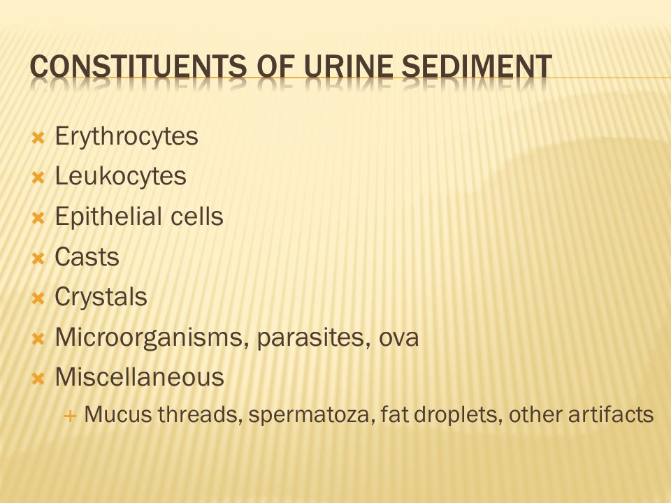 Constituents of urine sediment