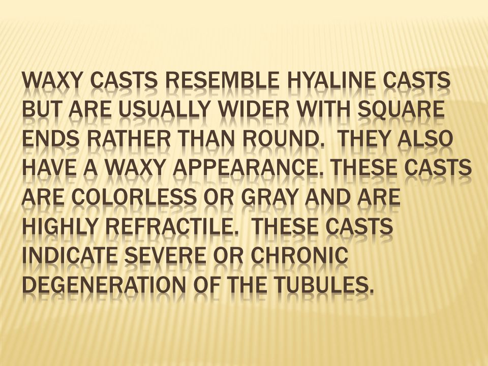 Waxy casts resemble hyaline casts but are usually wider with square ends rather than round.