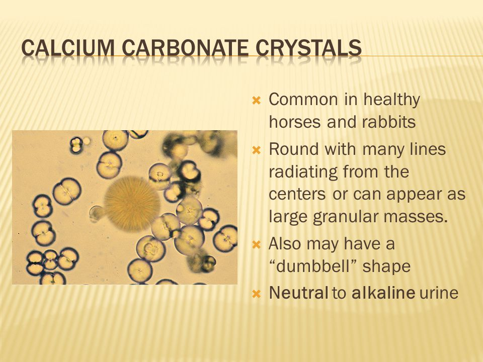 Calcium carbonate crystals