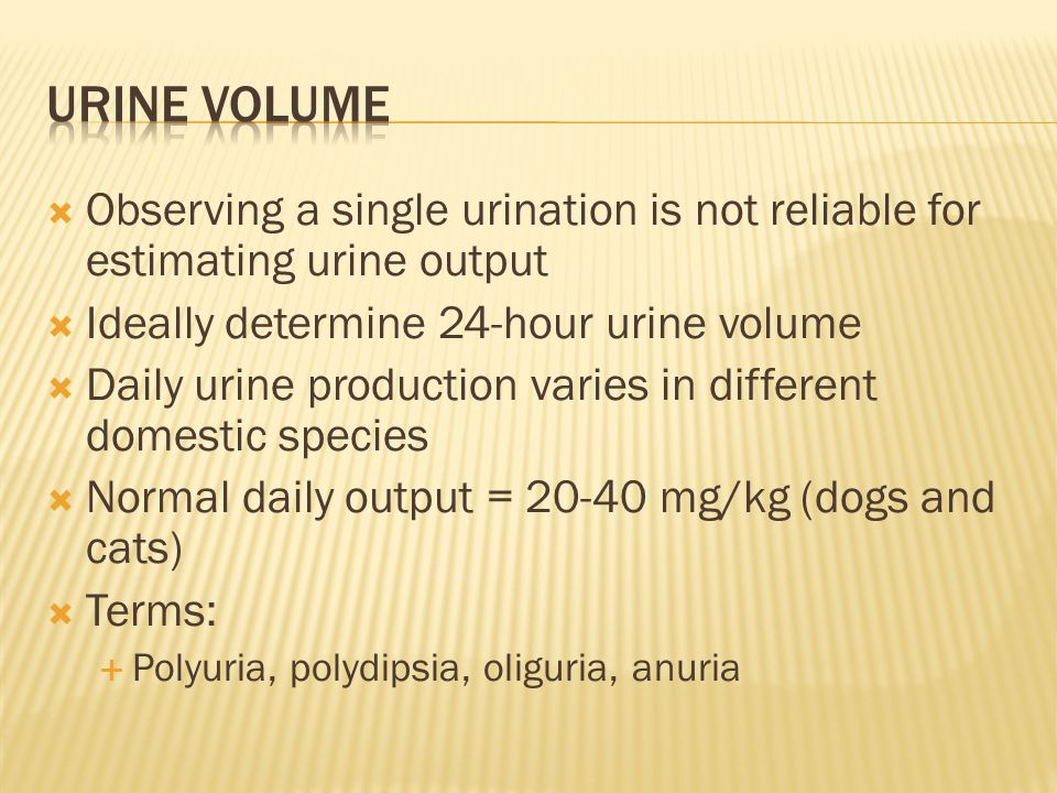 Urine volume Observing a single urination is not reliable for estimating urine output. Ideally determine 24-hour urine volume.