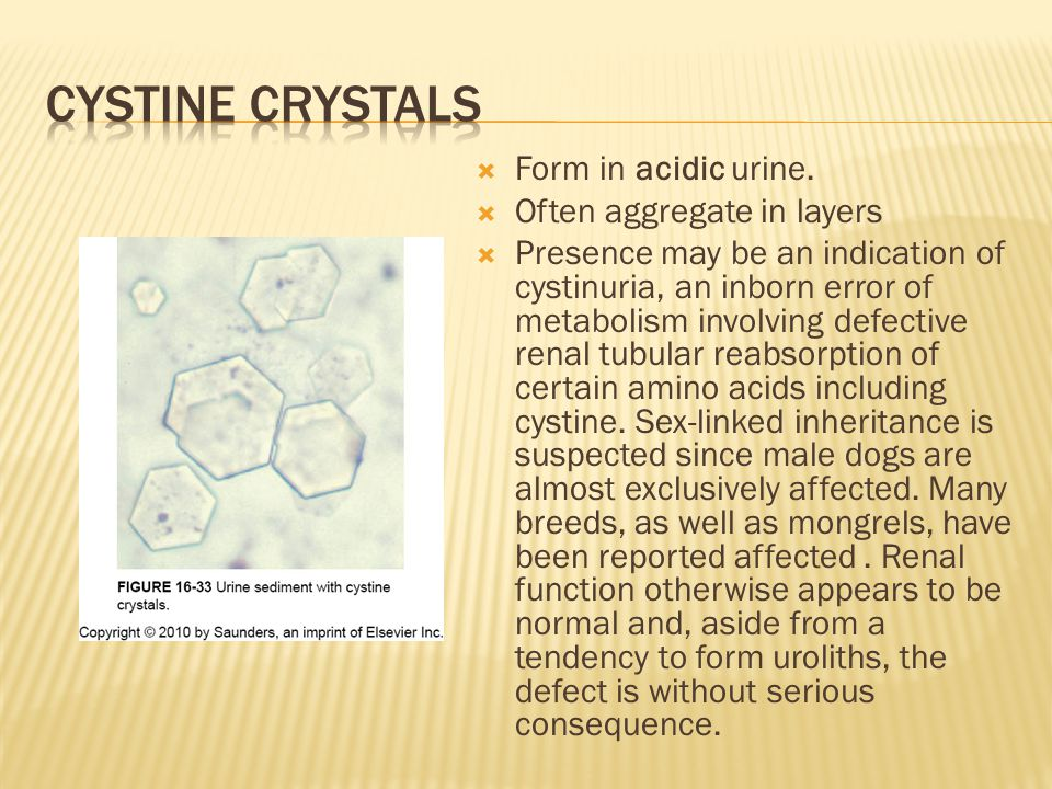 Cystine crystals Form in acidic urine. Often aggregate in layers