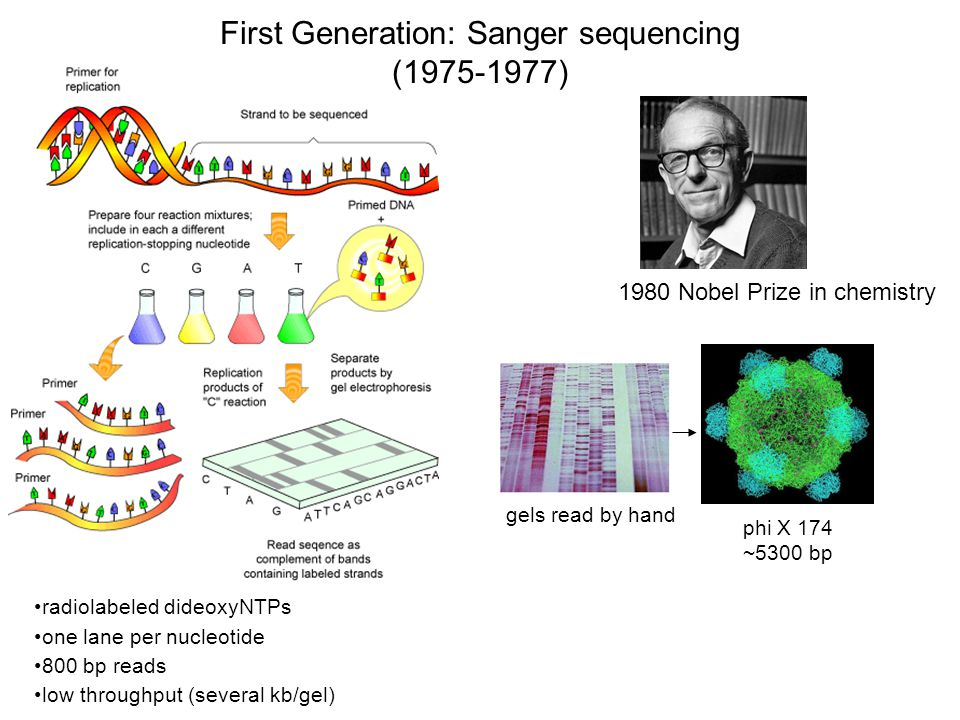 First Generation: Sanger sequencing