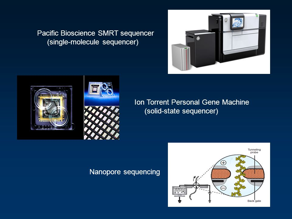 Pacific Bioscience SMRT sequencer