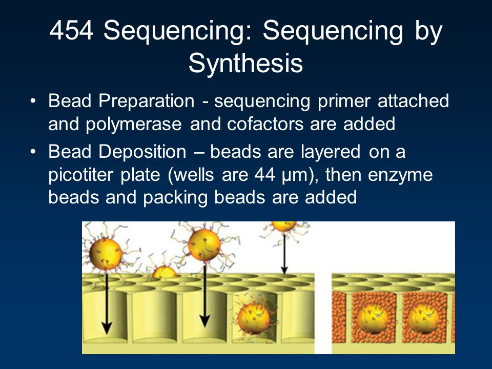 454 Sequencing: Sequencing by Synthesis